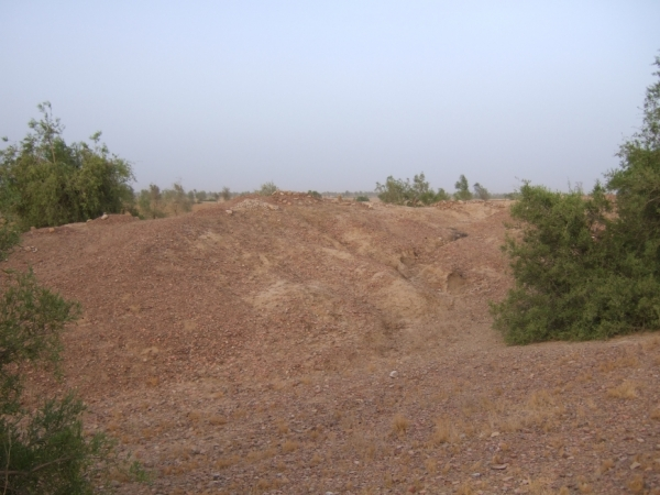 Pandhi Wahi (Mounds), Dadu